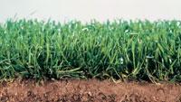 Turf growing mats