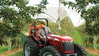 Utility tractor series