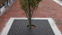 Recycled plastic tree grates