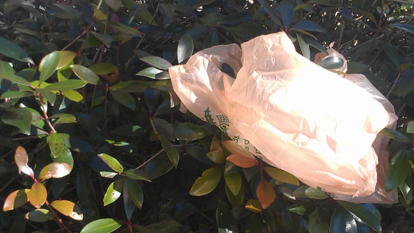 Los Angeles sacks plastic bags