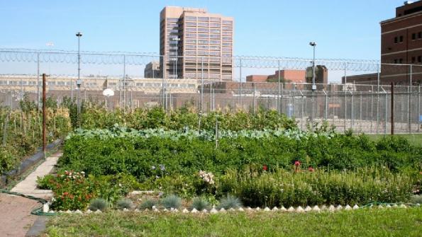 Prison produce