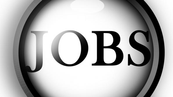 Local government hiring is on the rise
