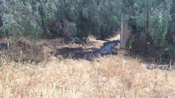 29,000 gallons of oil spill in Ventura County
