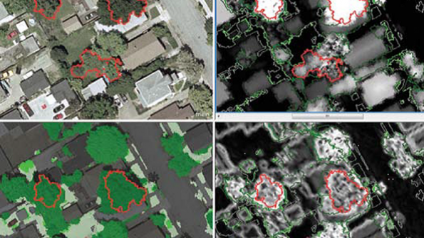 GIS mapping system increases San Jose fruit trees' yield