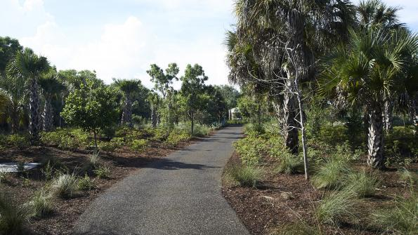 Park paths are paved with material made of recycled tires