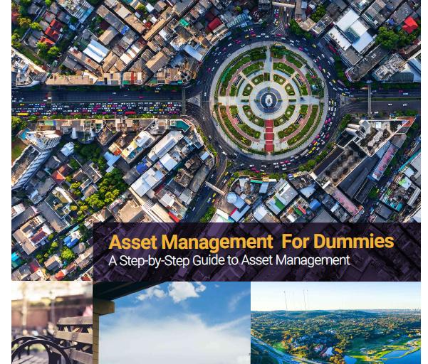 Asset Management for Dummies