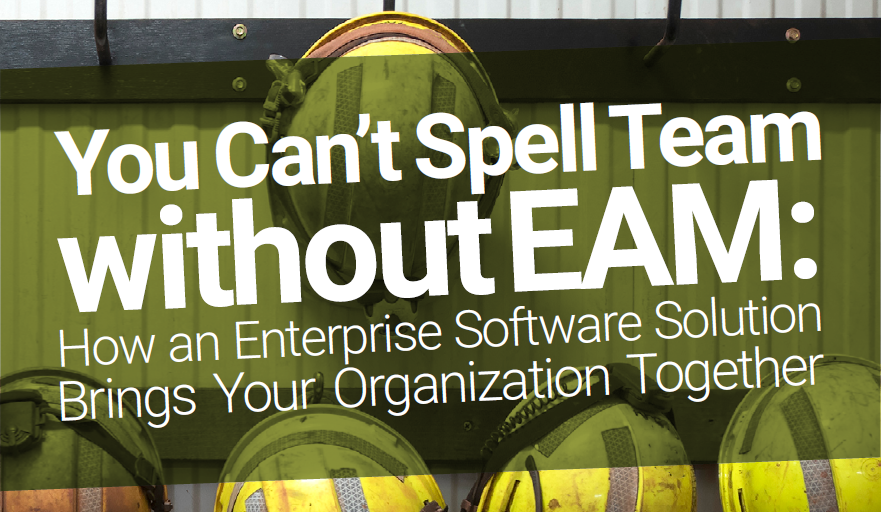White Paper: How an Enterprise Software Solution Brings Your Organization Together