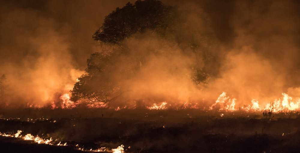 Elevate Your Wildfire Preparedness: Notification Plan Checklist and Kit